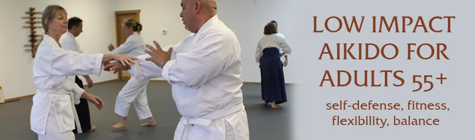 Aikido Seniors