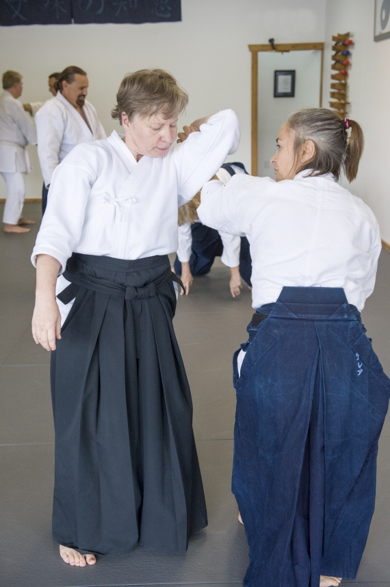 Aikido practice